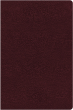 niv-thinline-reference-bible-large-print-bonded-leather-burgundy-red-letter-edition-indexed-comfort-print